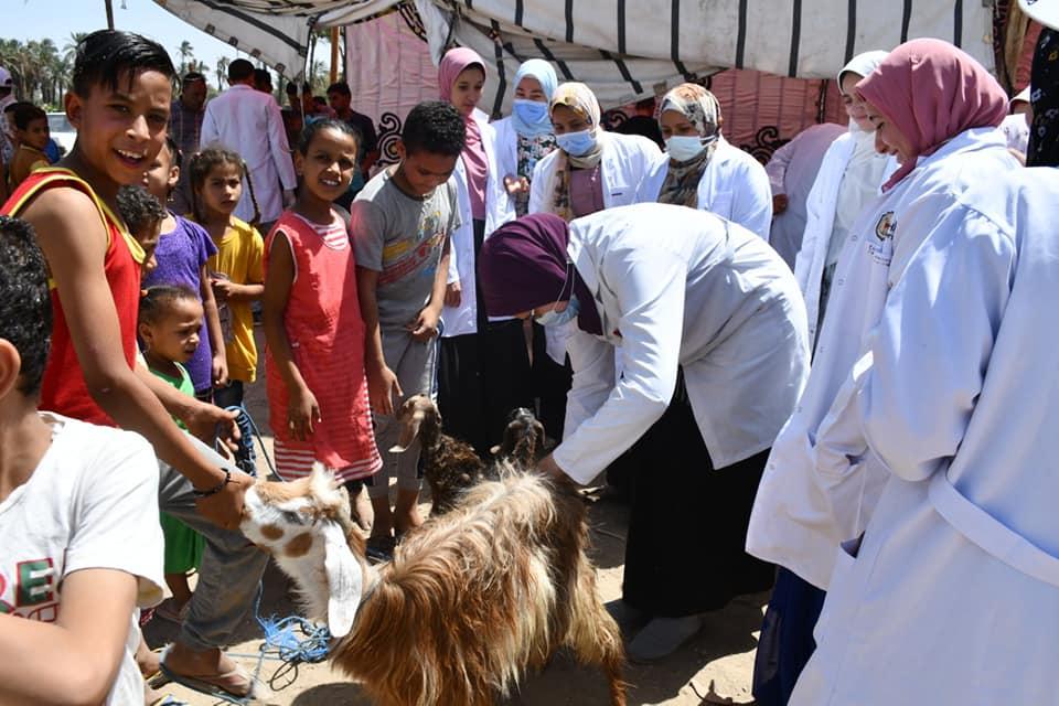 جامعة سوهاج تطلق قافلتها البيطرية المجانية لقرية نجع النجار